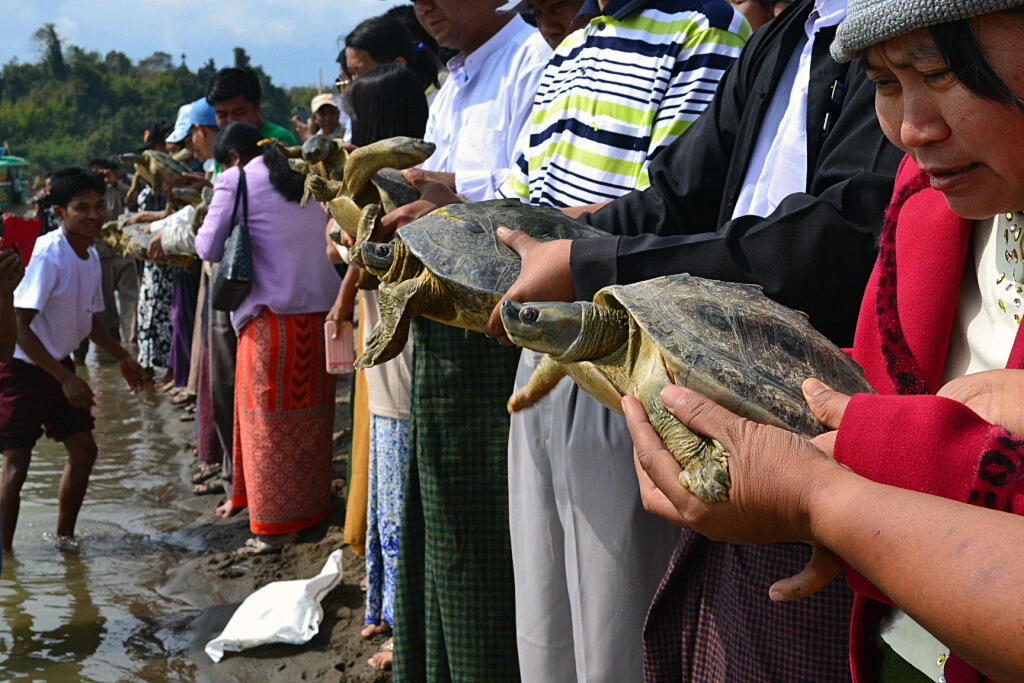 Villagers holding turtles