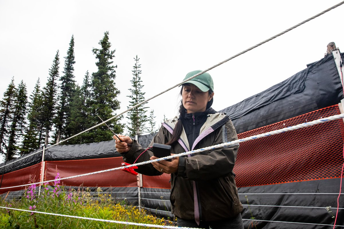 women fixing fence