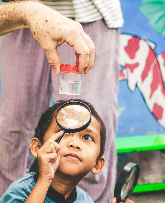 boy looking at mosquitoes with magnifying glass